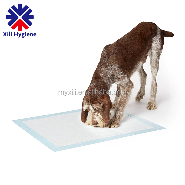 disposable training waterproof pet pads for dog china manufacture