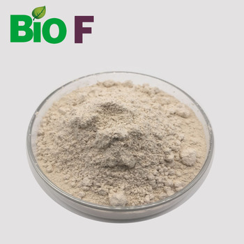 Pure Natural Brown Rice Protein Powder 80% protein Powder