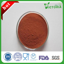 100% Natural Grape Seed Extract OPC 95%