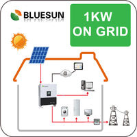 Bluesun best design on-grid 1kw solar power plant for solar home system