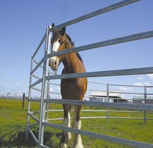Hot sale Temporary Galvanized Horse Stable , used horse corral panels, used horse fence panels