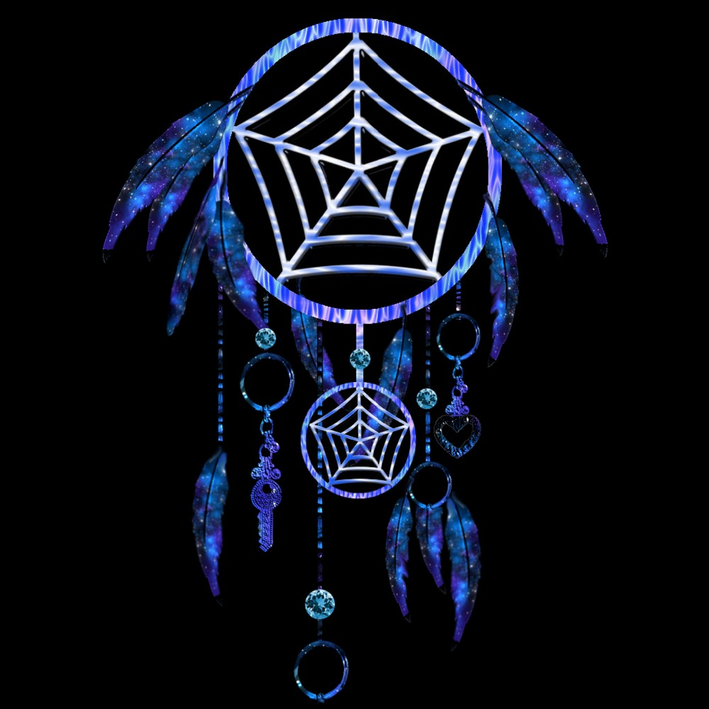 Pure Black feather dream catcher MS1045