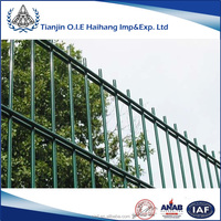 2D Welded PVC Coated Double Wire Fence/Hot dipped Galvanized double loop wire fence