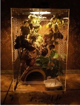 Acrylic Pet Display Cage
