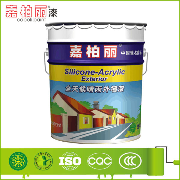 India Hot Sell Silicone Based Exterior Paint