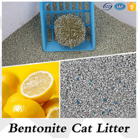 Safe And Environment Odd Shape Bentonite