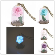 Europe and the United States fashion luminous pendant creative glass bottle rose flower <strong>necklace</strong>