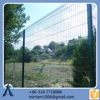Made in China hot sale Hot dip metal courtyard fencing / 3d backyard metal fence / welded metal courtyard fencing
