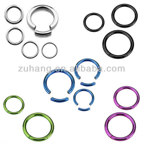 316L Stainless Steel Titanium Anodized Circular Segment Ring Body Piercing Jewelry Nose Rings