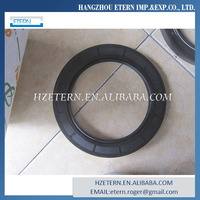 Professional Manufacturer Oil Seal Retainer