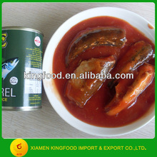 Canned mackerel fish in tomato paste