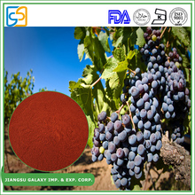 Most popular proanthocyanidin plant extract powder water soluble opc grape seed