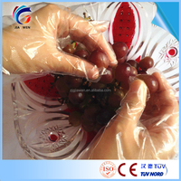 Power Free PE Disposable kitchen Cooking Cleaning Plastic Gloves Fit Both Hands