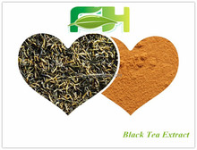 Spot Supply Pure Natural High Quality Instant Black Tea Extract Powder