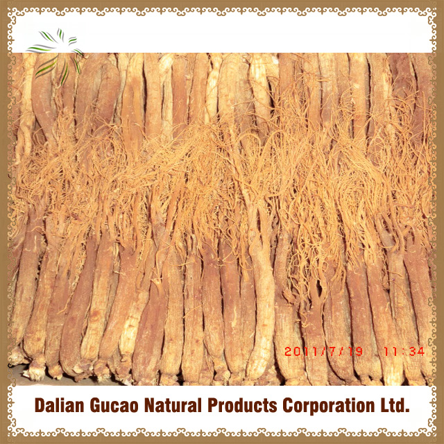 100%natural Korean RED GINSENG ROOT WITH TAILS/Ginseng root extract