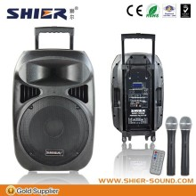 SHIER high quality Professional Sound pa system for bluetooth speaker bsk10