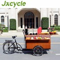 Outdoor electric food bicycle/ food cart