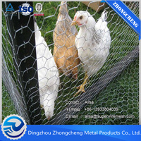 Small diameter hot-dipped galvanized chicken wire mesh/Galvanized iron wire for chicken coop hexagonal wire mesh