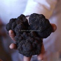 fresh black truffle mixed size