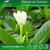 Hot sale Plant extract Colour Gardenia extract/Gardenia yellow/Gardenia extract powder