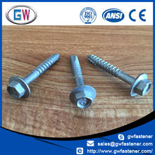 Cl4 Galvanized Hex Washer Head Type17 Self Tapping Screw