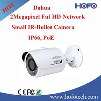 2MP IP Camera,Small IR Security Camera,network camera with POE