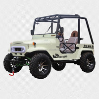 Hot Selling Gas Powered Mini Willys 200CC UTV for Sale