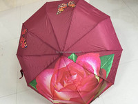 FS Galleria Antique Rose Folding Umbrella SuperDome Auto Open/Close Umbrella Classic Black Automatic Travel Umbrella