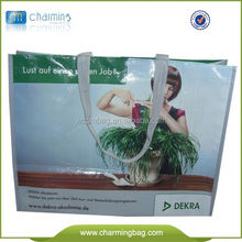 Non Woven Bag/PP Non Woven Bag/Non Woven Bottle Wine Tote Bags
