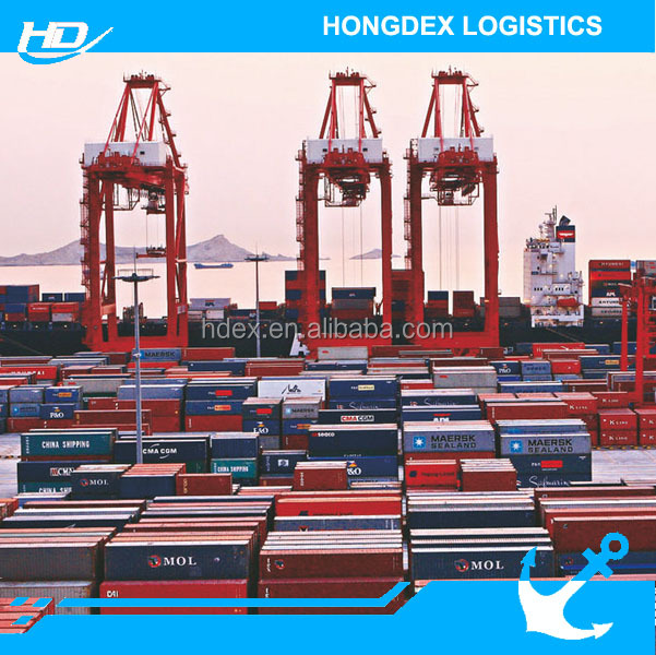 Freight Forwarder Low Sea Freight Shipping Cost from Guangzhou China to Worldwide