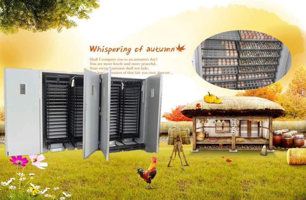 5280 hatcher or chicken egg incubator for sell with CE certificate