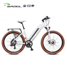 New Fashionable Design City Electric Bike Cheap Wholesale Electric Cargo Bicycle For Sale