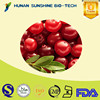 ISO Manufactory Supply Cranberry Extract powder/Cranberry Fruit Powder/Cranberry juice extract