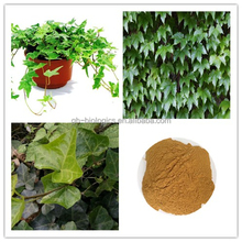 High Quality Free Sample Ivy Leaf Extract 1% ~10% Hederacoside C