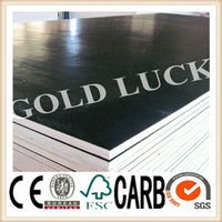 wholesale plywood for constructions import export company names