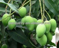 98%TC mango fertilizer/DA-6 Diethyl Amimoethyl Hexanote