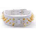 Large gold Spiked Leather Dog Collars
