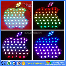 Colorful flash led light for company name sign logo