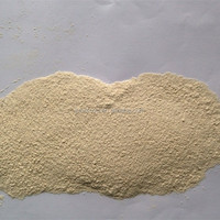 100mesh latest crop xinghua air dried onion powder