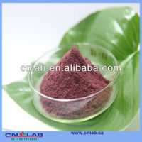 Factory Supply Bilberry Fruit P.E.-For Health And Madical