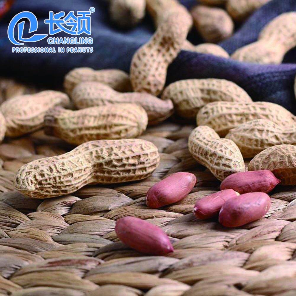 Chinese good price blanched peanuts with delicious tastes