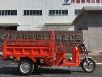 China Low transportation cost electric adult tricycle with cargo