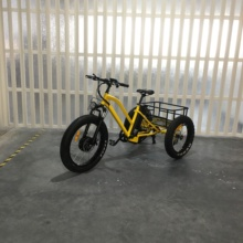 china three wheel motorcycle cargo 500W electric tricycle with fat tire
