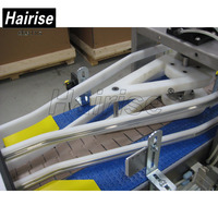 Hairise heavy duty industrial belt material handling scale factory automate conveyor slats plastic dynamics systems maintenance