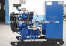 Natural Gas Generator Set Used for Power Plant