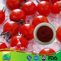 Natural Antioxidant Tomato Extract 5-20% Lycopene for Food Additives