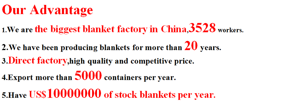 100%polyester blanket weaving machine plain style blanket