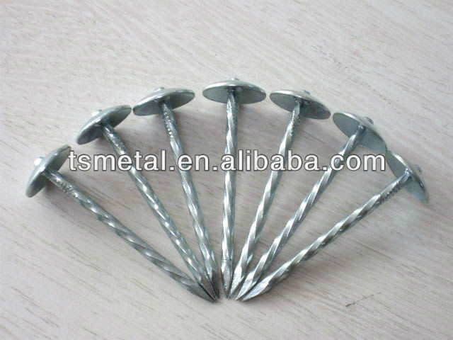 Steel Twisted Shank Roofing Nail