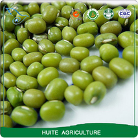 Dried Green mung bean