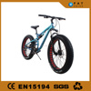 american chopper mountain bike carbon
